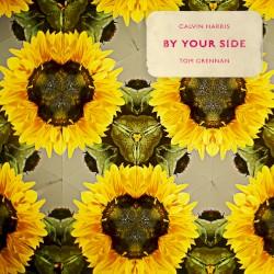 CALVIN HARRIS - TOM GRENN - By Your Side